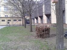 Iskolakert 1